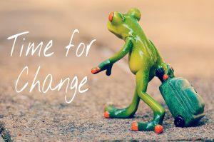 Zeit für Veränderungen bei einer Organisationsentwicklung Beitragsbild mit Frosch - PROAKTIV Unternehmensberatung